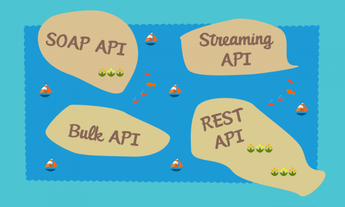 Salesforce APIs