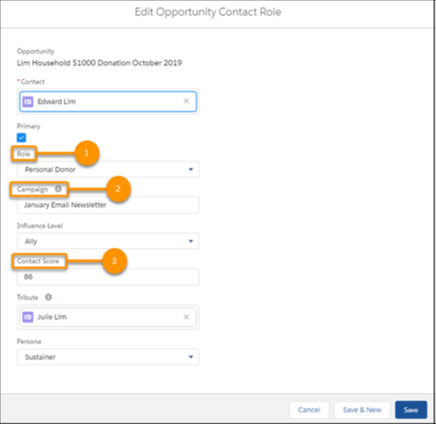 Customisation of Opportunity Contact Roles